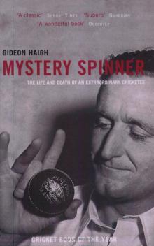 mystery spinner v2